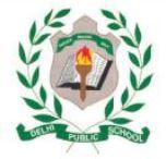 Delhi Public School, Birgunj